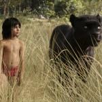 Dzsungel könyve